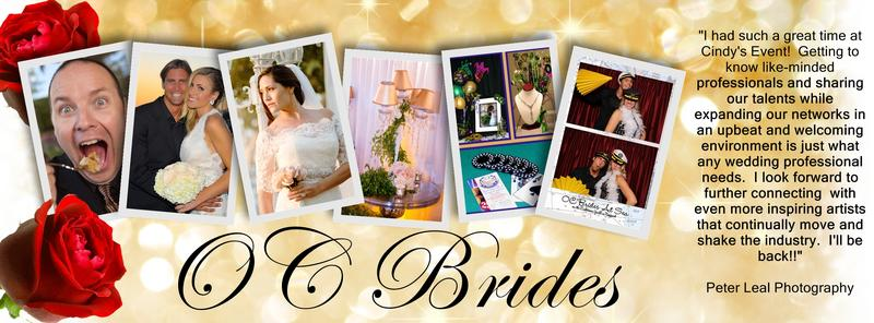 Connecting Brides with Trusted WEdding Professionals